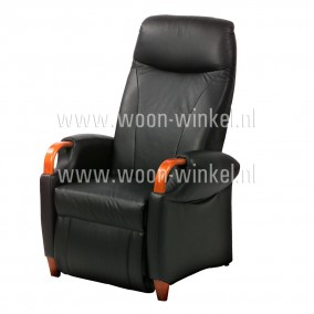 Fitform 232 Relaxfauteuil